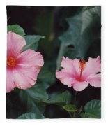 Mexico Pink Beauties By Tom Ray Fleece Blanket