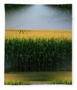 Midwest Gold Fleece Blanket