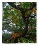 Mighty Fall Oak #2 Fleece Blanket