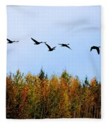 Migratory Flight Fleece Blanket