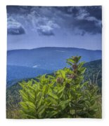 Milkweed Plants Along The Blue Ridge Parkway Fleece Blanket