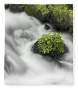 Milky Stream Fleece Blanket