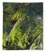 Mimosa At Sunset Fleece Blanket