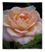 Mini Rose Fleece Blanket
