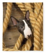 Miniature Bull Terrier Puppy Fleece Blanket
