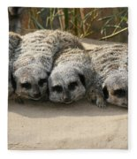 Mischievous Meerkats Fleece Blanket