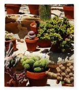 Mission Cactus Garden Fleece Blanket