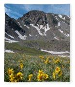 Missouri Mountain And Wildflower Landscape Fleece Blanket