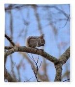 Mister Squirrel Fleece Blanket