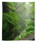 Misty Evening At Watkins Glen Fleece Blanket