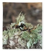 Misty Moss Fleece Blanket