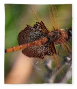 Mocha And Cream Dragonfly Profile Fleece Blanket