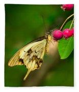 Mocker Swallowtail Butterfly And Berries Fleece Blanket