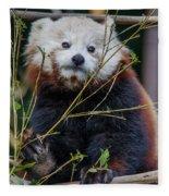 Mohu The Teenage Red Panda Fleece Blanket