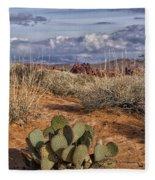 Mojave Desert Cactus Fleece Blanket