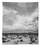 Mojave National Preserve Fleece Blanket