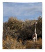 Momma And Baby Giraffe Fleece Blanket