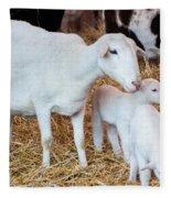 Momma And Newborns Fleece Blanket