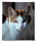 Momma Cat Fleece Blanket