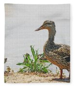 Momma Duck And Baby With A Different View Fleece Blanket