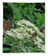 Monarch Butterfly 47 Fleece Blanket