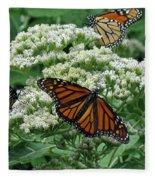 Monarch Butterfly 54 Fleece Blanket