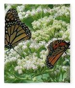 Monarch Butterfly 56 Fleece Blanket