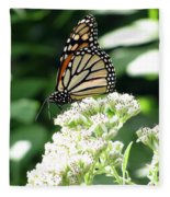 Monarch Butterfly 58 Fleece Blanket