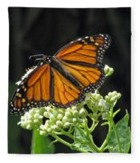 Monarch Butterfly 60 Fleece Blanket