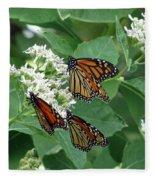 Monarch Butterfly 63 Fleece Blanket