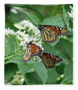 Monarch Butterfly 65 Fleece Blanket