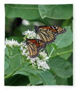 Monarch Butterfly 70 Fleece Blanket
