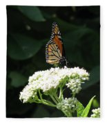 Monarch Butterfly 71 Fleece Blanket