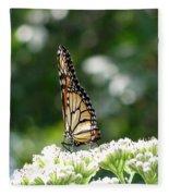 Monarch Butterfly 72 Fleece Blanket