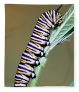 Monarch Butterfly Caterpillar Fleece Blanket