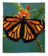 Monarch Butterfly Danaus Plexippus Fleece Blanket
