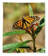 Monarch Butterfly On Plant With Eggs Fleece Blanket