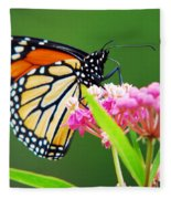 Monarch Butterfly Simple Pleasure Fleece Blanket