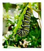 Monarch Caterpillar 5 Fleece Blanket