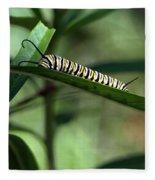 Monarch Caterpillar Fleece Blanket