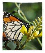 Monarch Feeding Fleece Blanket