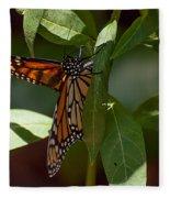 Monarch In The Shade Fleece Blanket