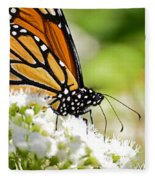 Monarch Moment Fleece Blanket