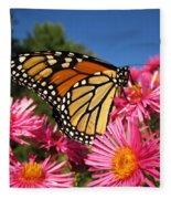 Monarch On Pink Asters Fleece Blanket
