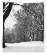 Monarch Park - 324 Fleece Blanket