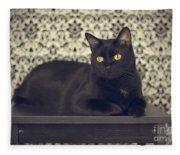 Mongo The Robust Cat Fleece Blanket