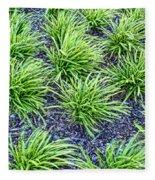 Monkey Grass Abstract Fleece Blanket