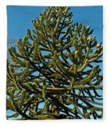 Monkey Puzzle Tree E Fleece Blanket