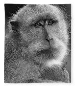 Monkey's Eyes Fleece Blanket