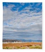 Mono Lake Tufa Formations Fleece Blanket